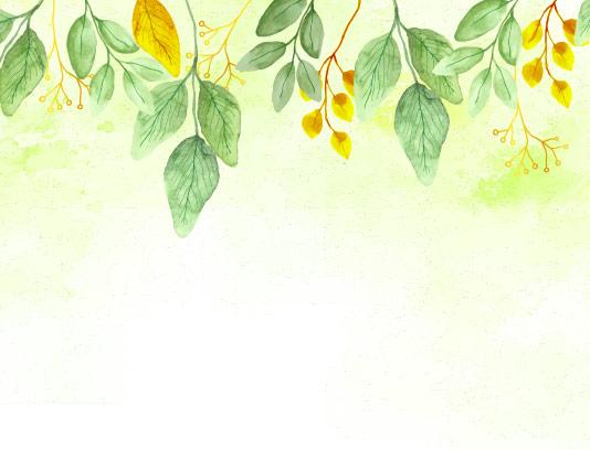 وکتور کادر و حاشیه برگ رنگی