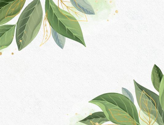 وکتور کادر و حاشیه برگ سبز