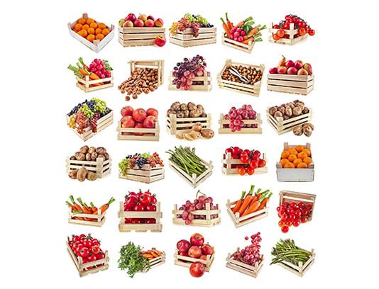 عکس با کیفیت سبد انواع میوه
