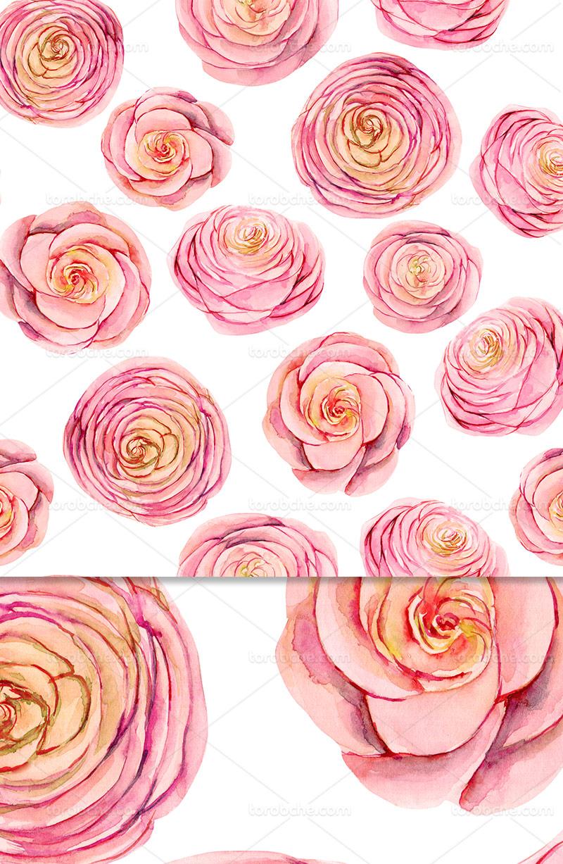 پترن و زمینه گل رز صورتی