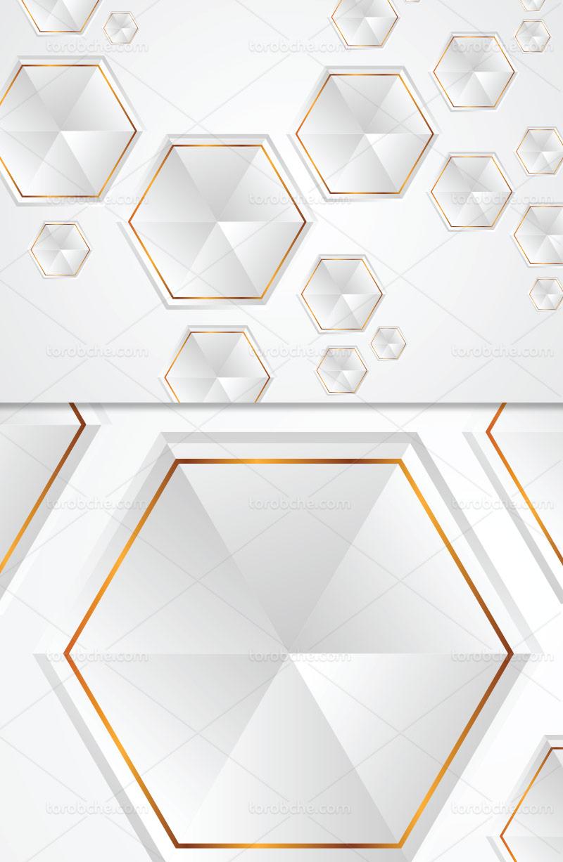 وکتور زمینه شش ضلعی سفید