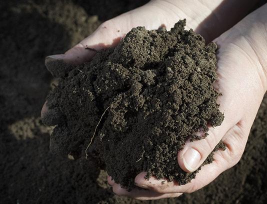 عکس خاک باغبانی با کیفیت