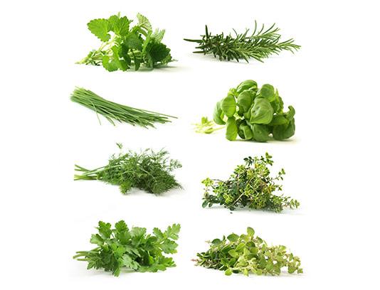 عکس سبزیجات معطر