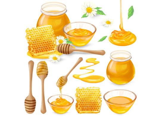 وکتور عسل با موم عسل