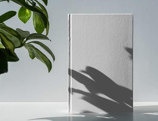 موکاپ طرح جلد دفتر