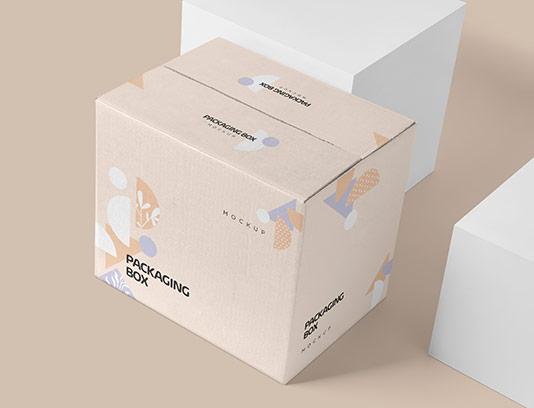 موکاپ بسته بندی جعبه PSD