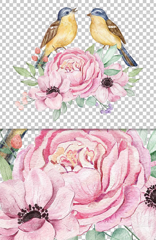 عکس دوربری گل و پرنده