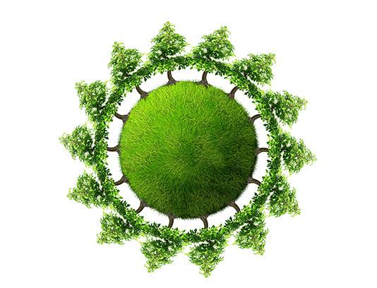 عکس زمین سر سبز با کیفیت