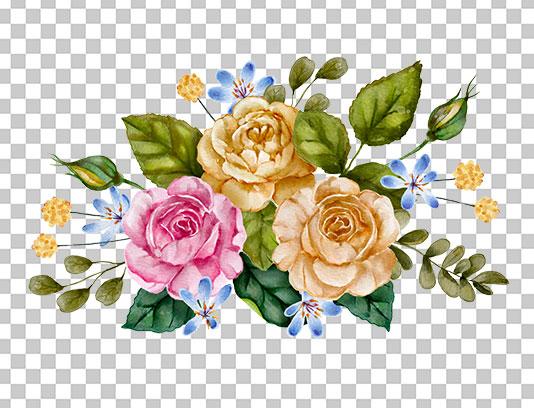 عکس دوربری شده گل رز زرد