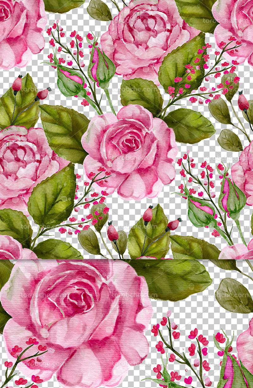 عکس دوربری شده گل و بوته