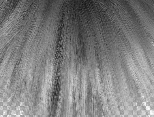 عکس دوربری شده مو زنانه