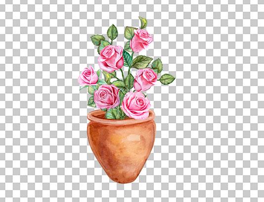 عکس دوربری شده گلدان